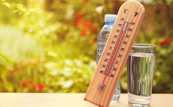 Canicule, conseils contre la déshydratation d'une personne âgée